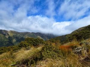 sunny views of the tararuas