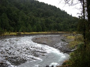 Tauherenikau river