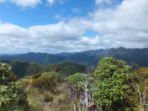 views from twin peak