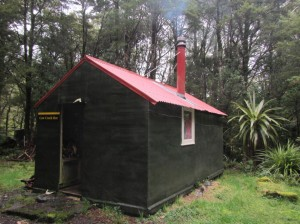 First class accommodation at Cow Creek – this cosy little hut sleeps six, and has a great camping area too