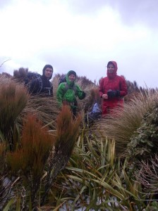 TR group adj