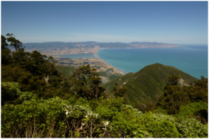 The view to Palliser Bay from the summit