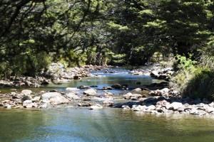 Cobb River