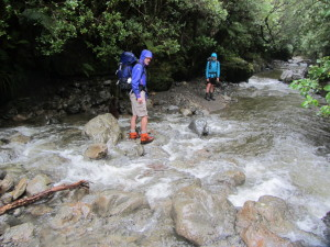 College Creek