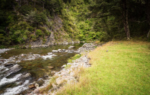 Mitre-Flats_track-swimming-hole