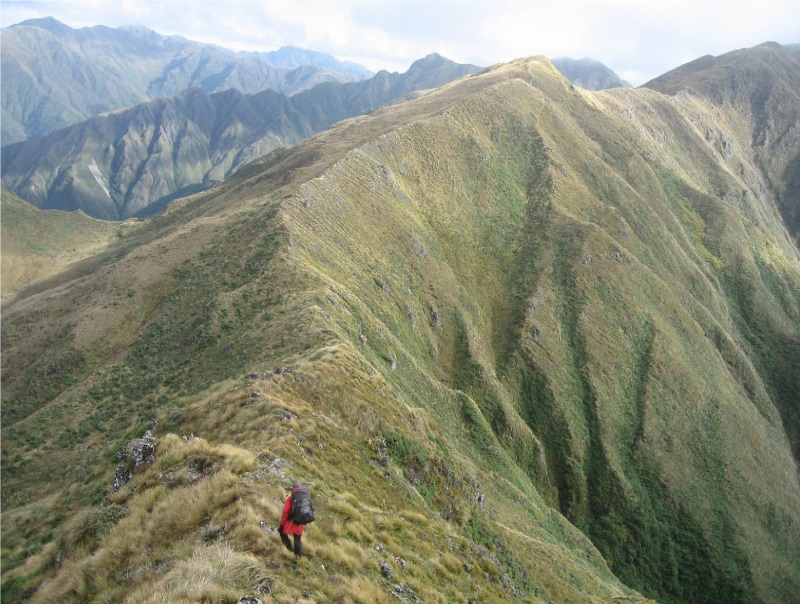 Tararua Tops (Photo: Jenny Cossey)