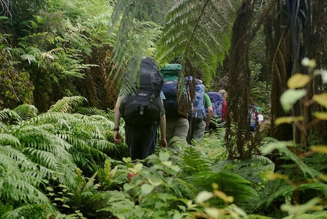 Tauherenikau valley (photo: WeiMin Ren)