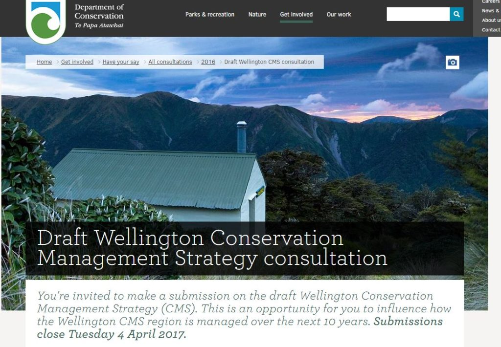 What is conception date in Wellington