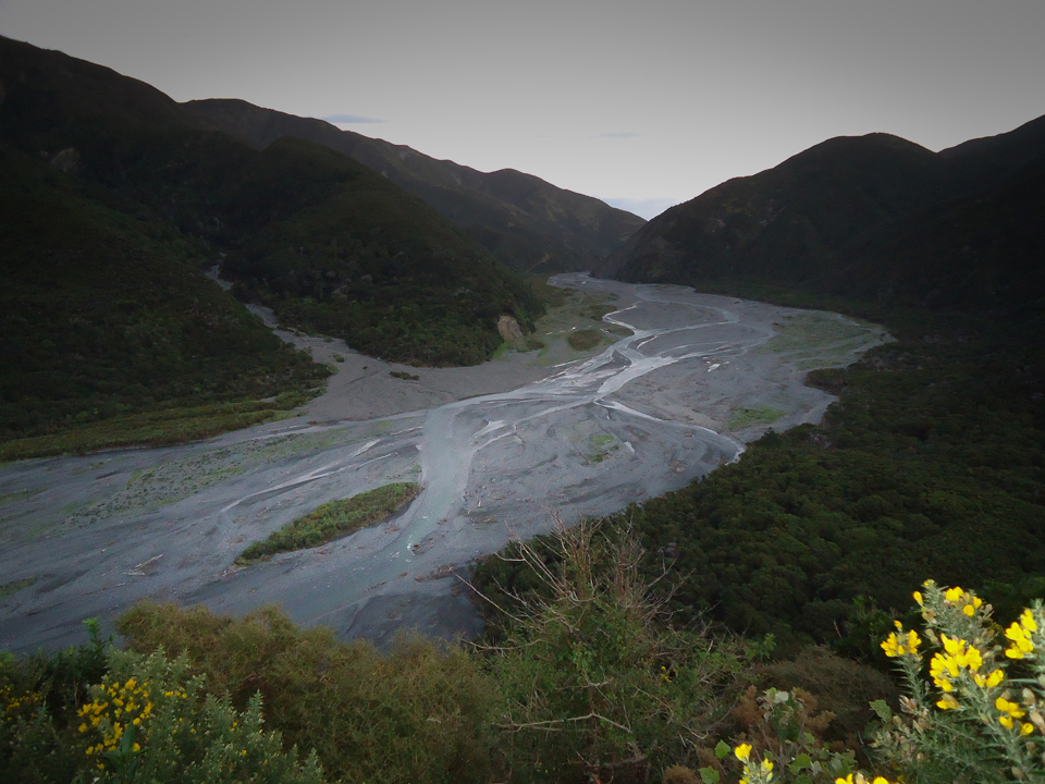 Orogorongo River from Baker Track