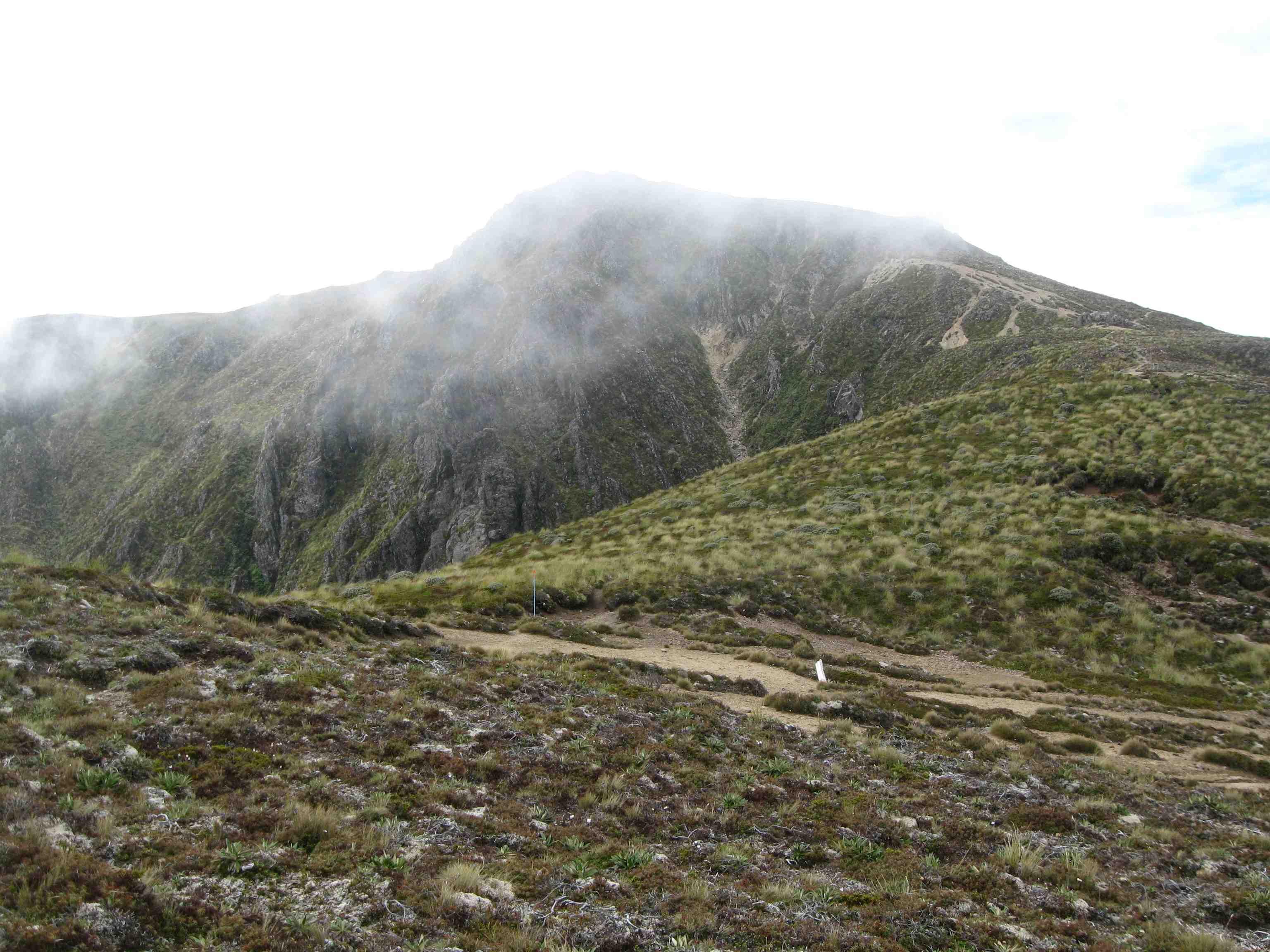 Waipakahi Hut via Umukarikari  mist 3b40dcda7e34