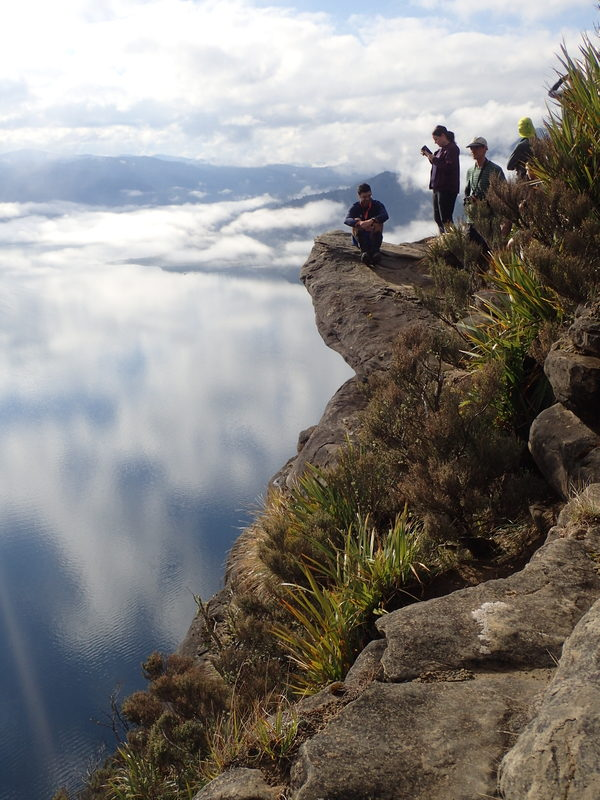 Te Urewera | Wellington Tramping and Mountaineering Club