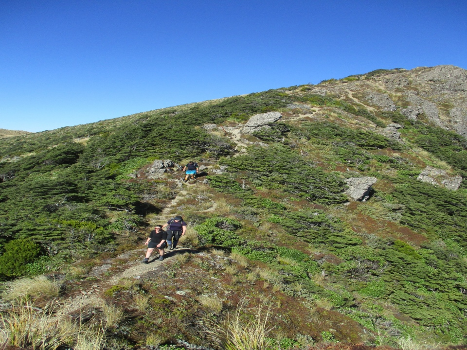 Trampers walking along a ridge in Ruahine Ranges