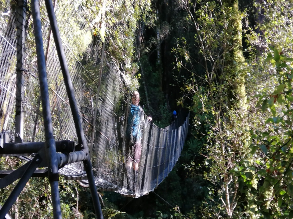 Matt walking on a swing bridge, Tararua Ranges