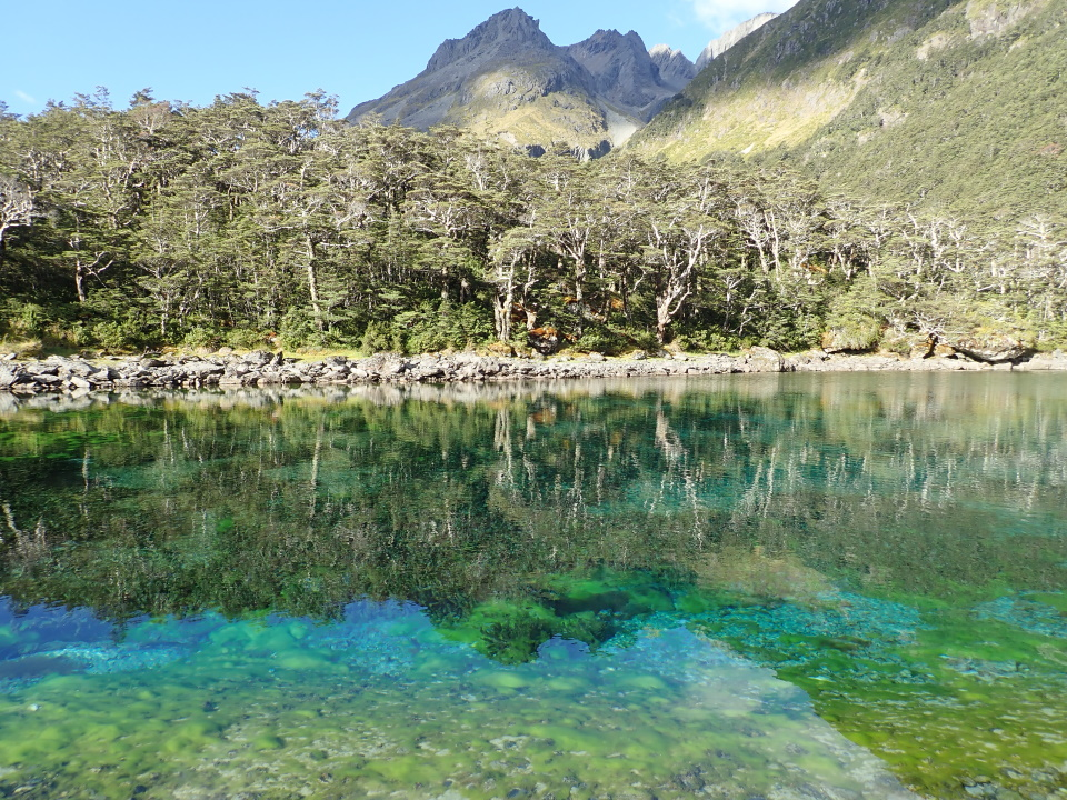 Blue Lake, Nelson Lakes