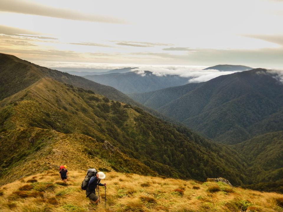 Quoin ridge