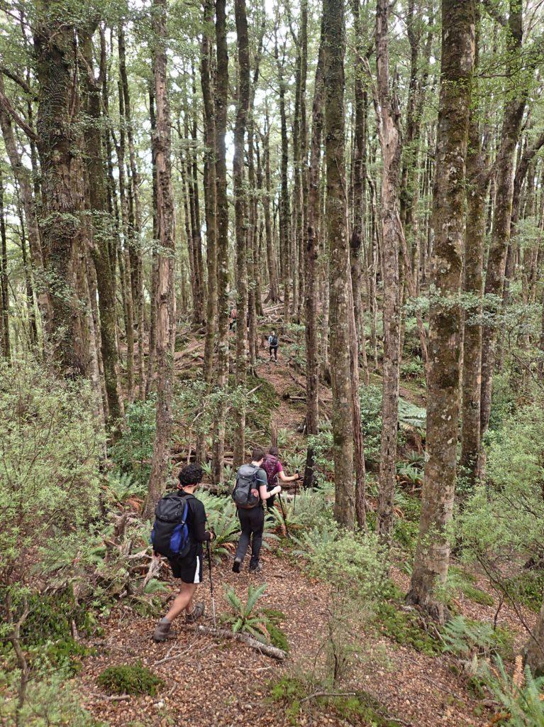 Turere Ridge