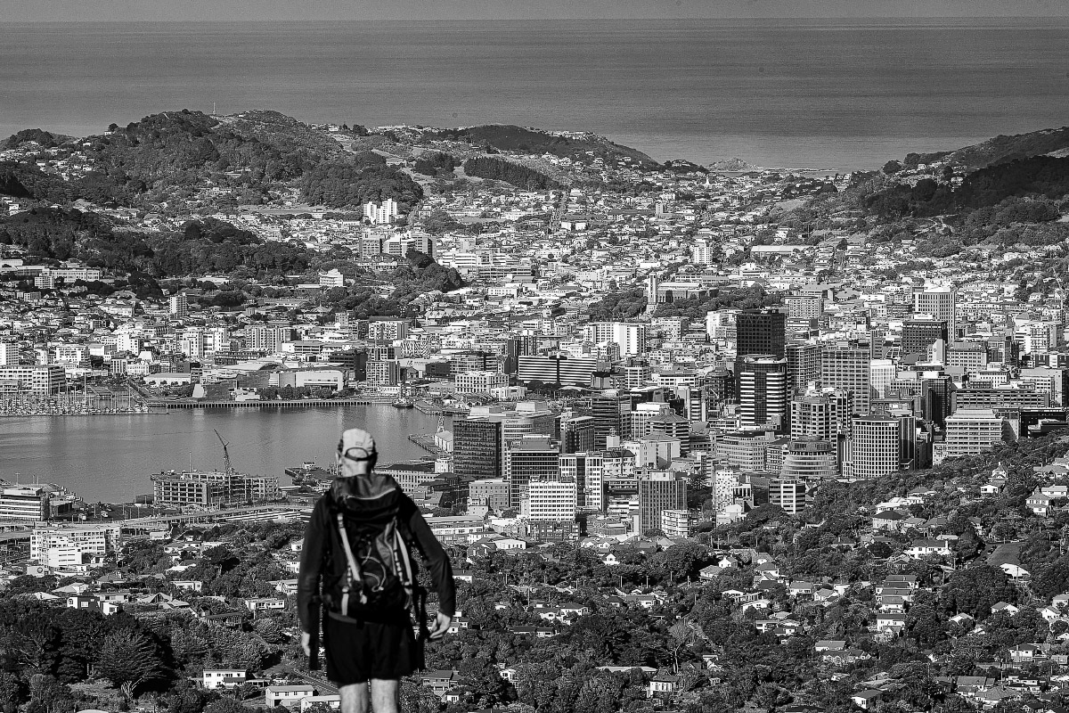 Wellington City from Mt Kaukau