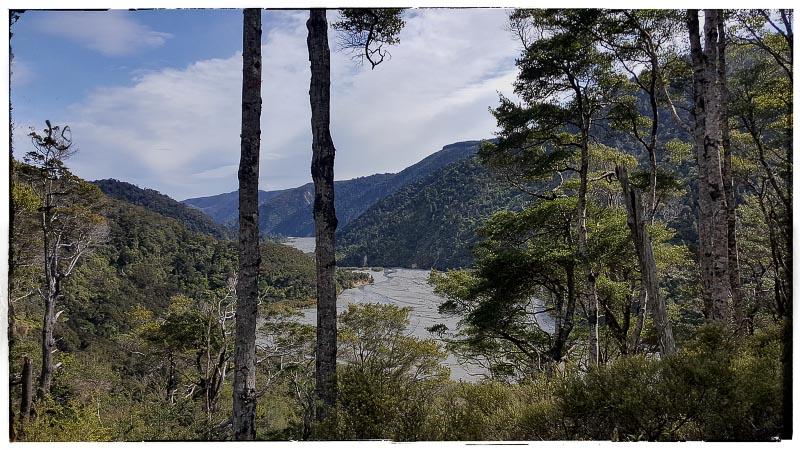 Back to Orongorongo Valley