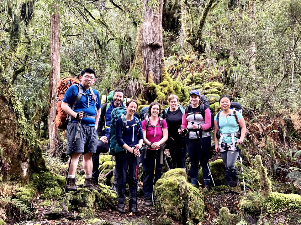 Trampers on Iron Gate Hut track