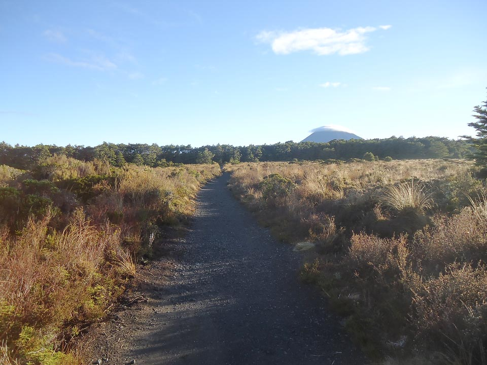 An easy start on the track from Whakapapa Village. Ngauruhoe is seen in the distance.
