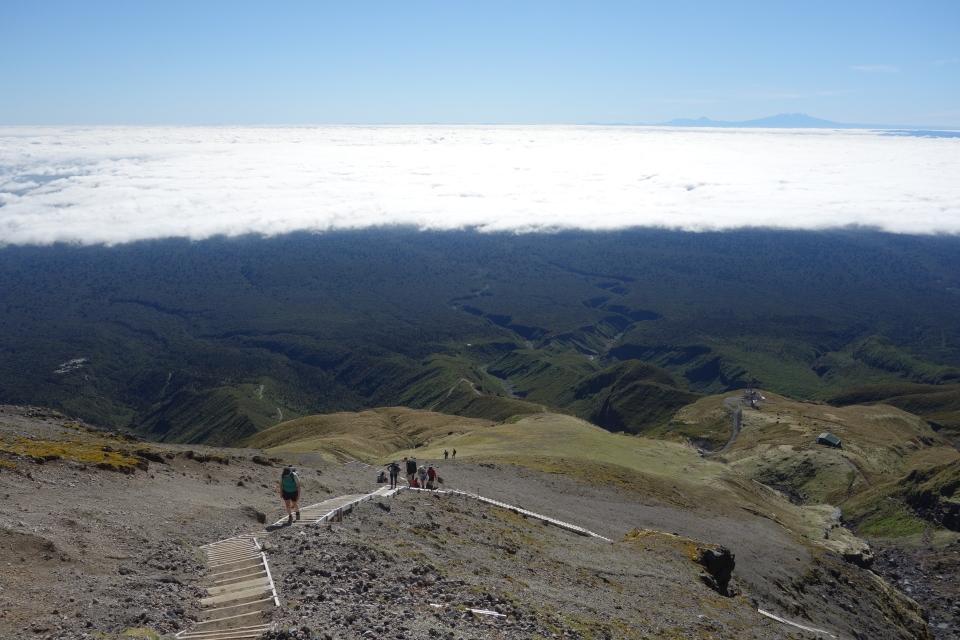 Steps down Mt Taranaki