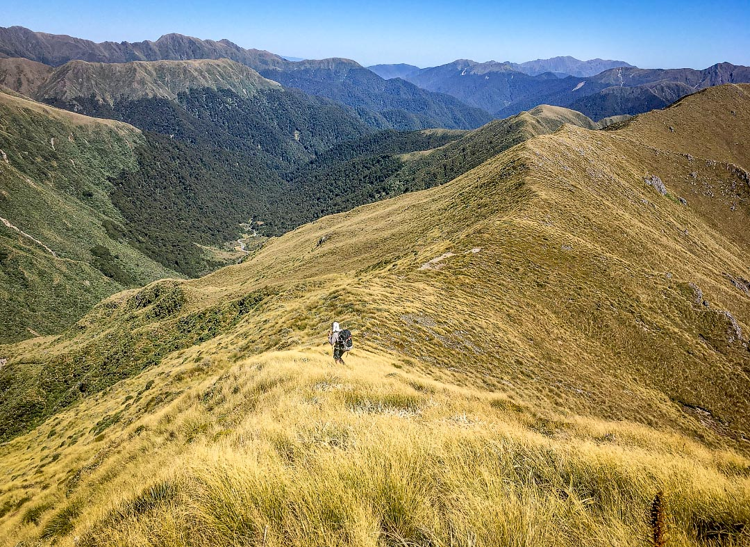 Descending Carkeek Ridge in the Tararua Range