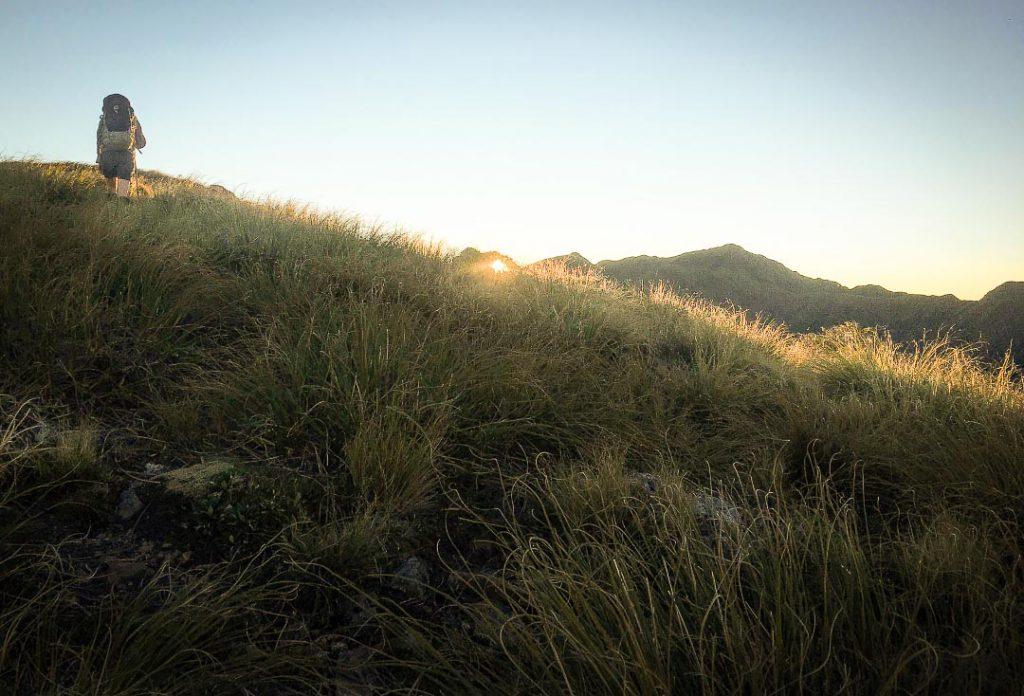 Sunrise at Carkeek Ridge