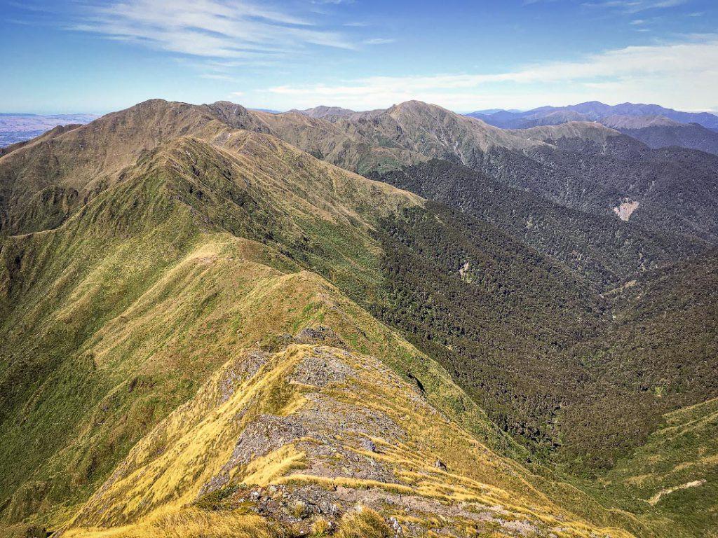 View south from Girdlestone in the Tararua Range