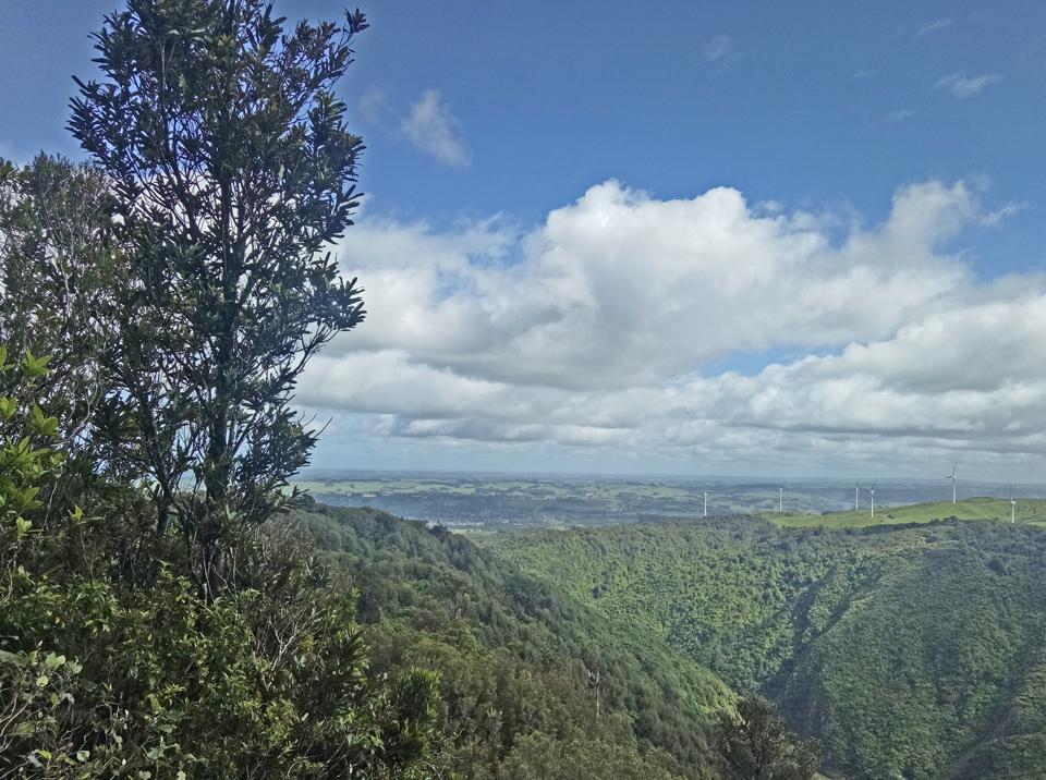 Manawatu Gorge Trail