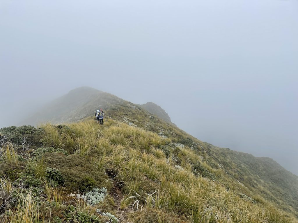 Along the top of the Tunupō loop