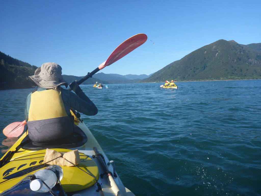 View of the back of a kayaker paddling on the sea. Three other kayaks are visible ahead