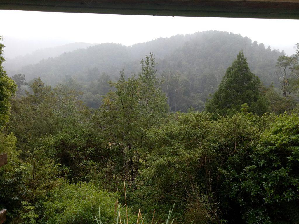 Views over bush