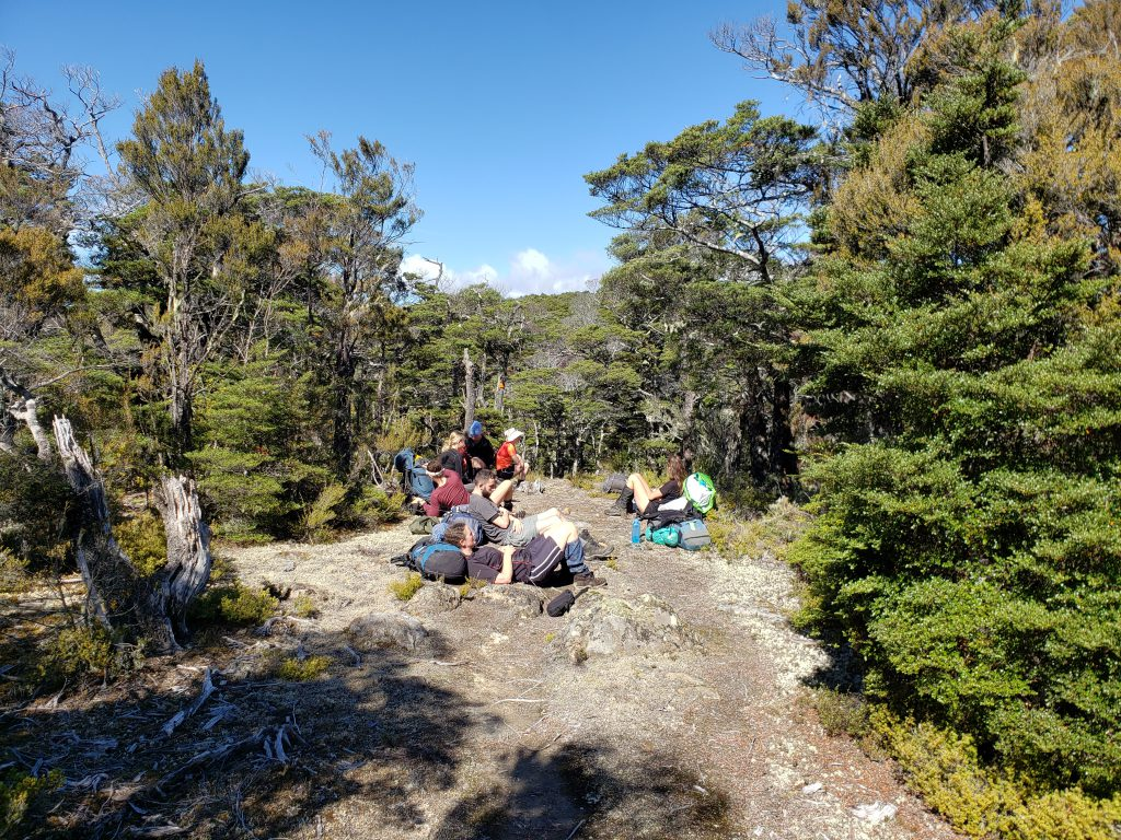Lazy trampers sitting down in a clearing