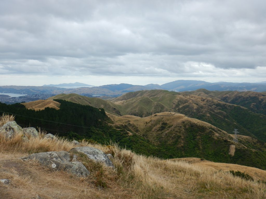 Looking across hills to Kapiti island