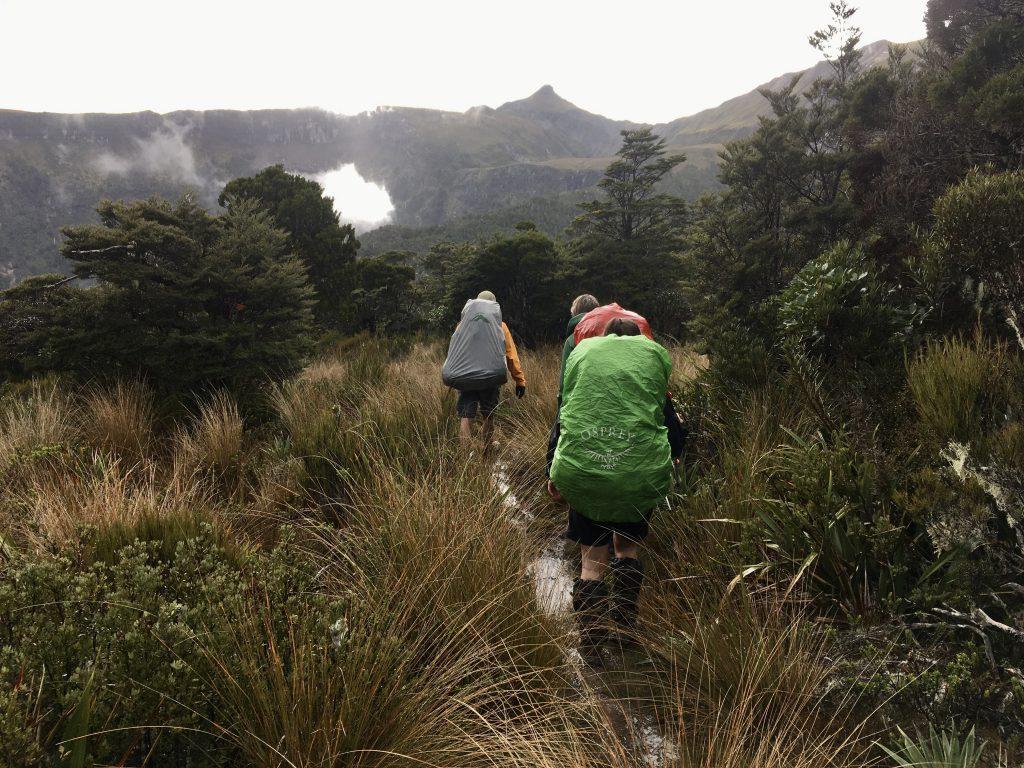 Three trampers walking through open bush. It looks wet
