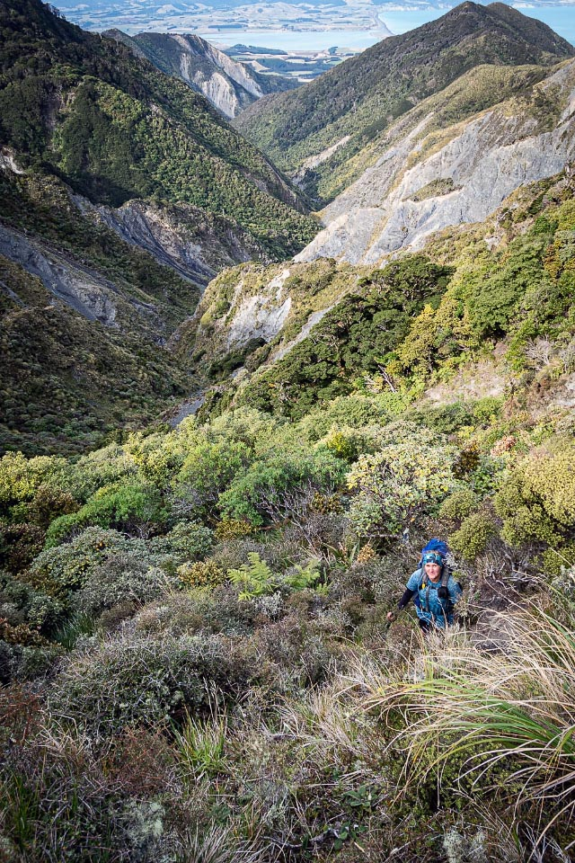 Tramping up through bush with views down the valley behind