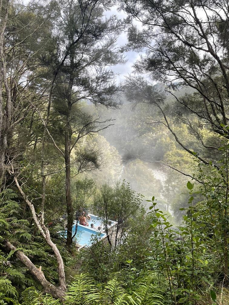 Hot pools in bush
