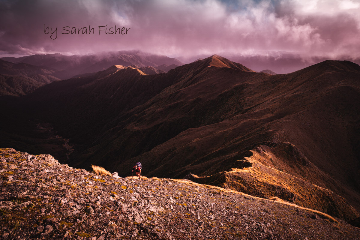 Carkeek Ridge