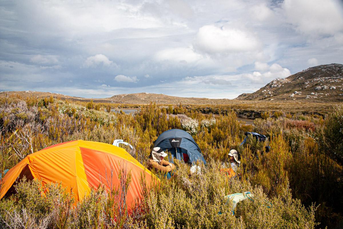 A cramped camp in the scrub at Cook Arm