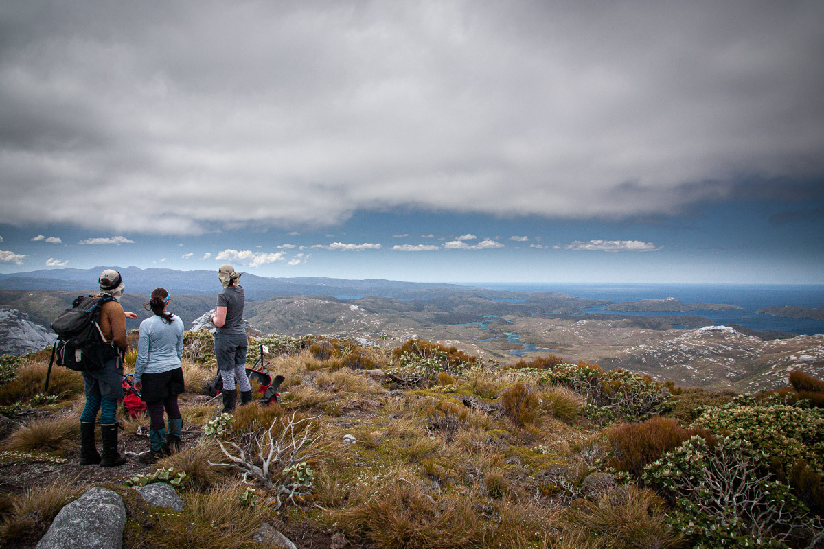 On the summit of Gog