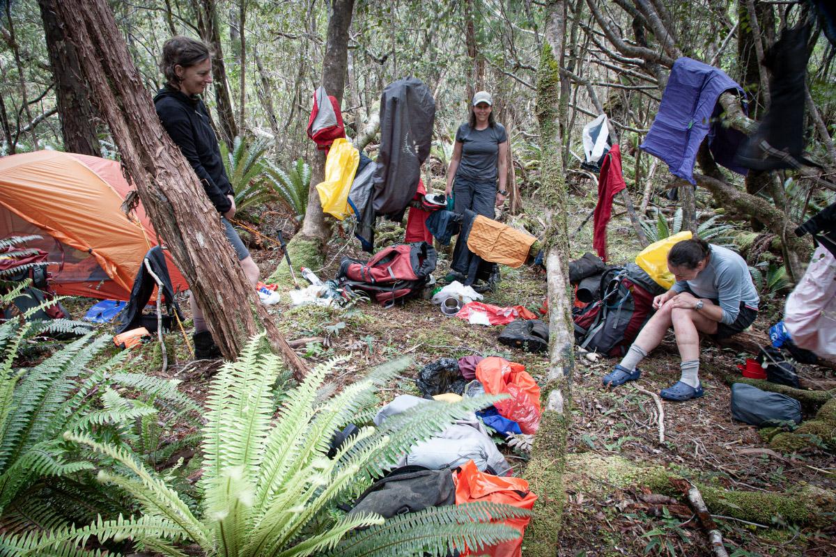 Damage control at campsite beyond Bens Bay