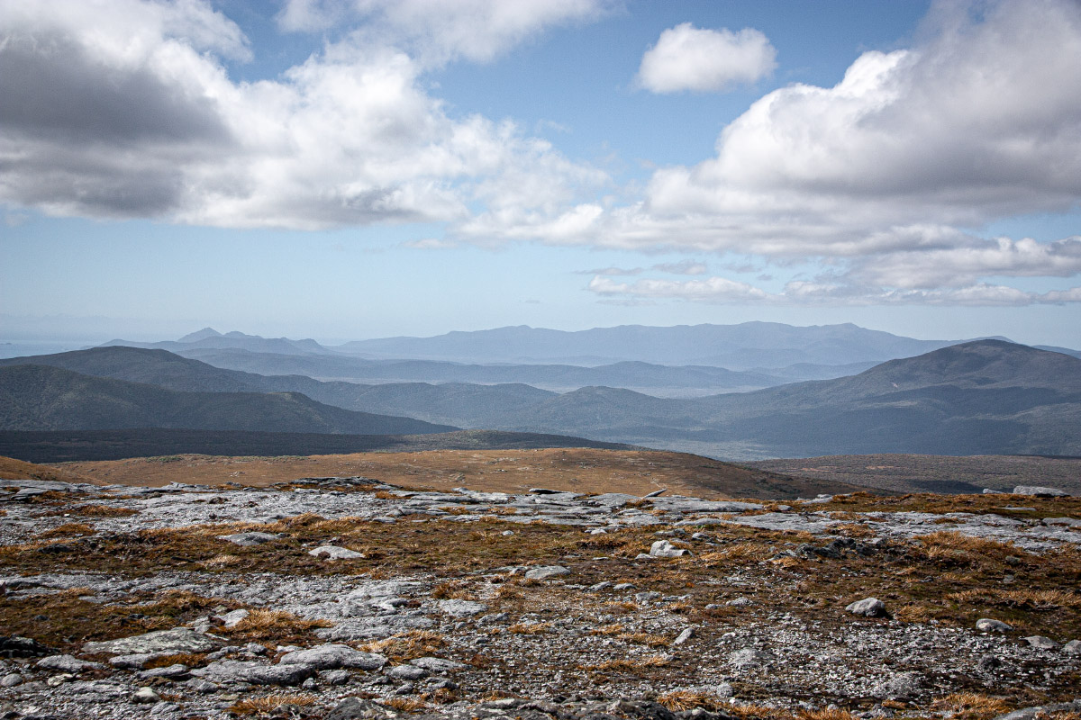 North from Table Hill. Ruggedy Range left skyline.